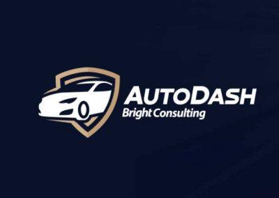 Conheça a nova plataforma AutoDash